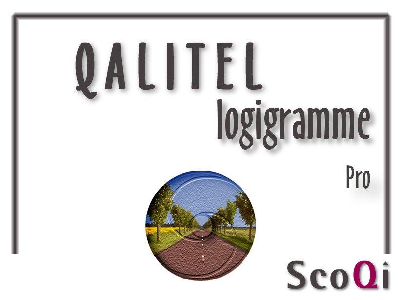 qalitel logigramme logiciel qualite edition Pro. Votre logigramme, organigramme, diagramme, flowchart en version Pro